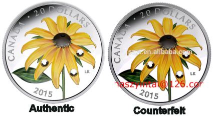 2015 $20 Daisy Authentic & Counterfeit